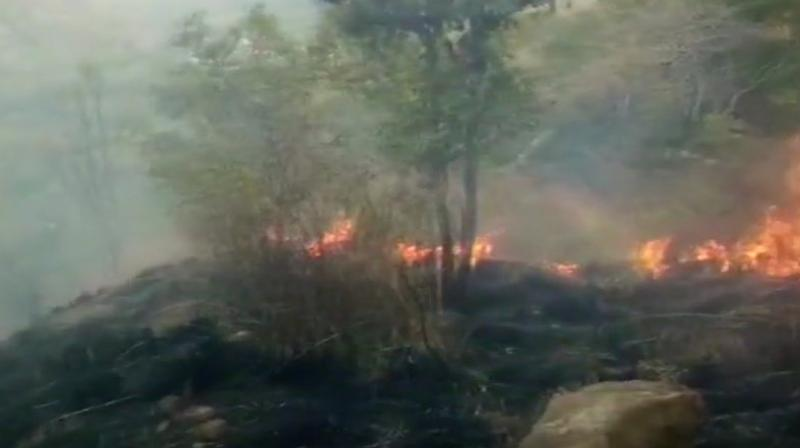Massive forest fire breaks out in Tamil Nadu, 20 students trapped