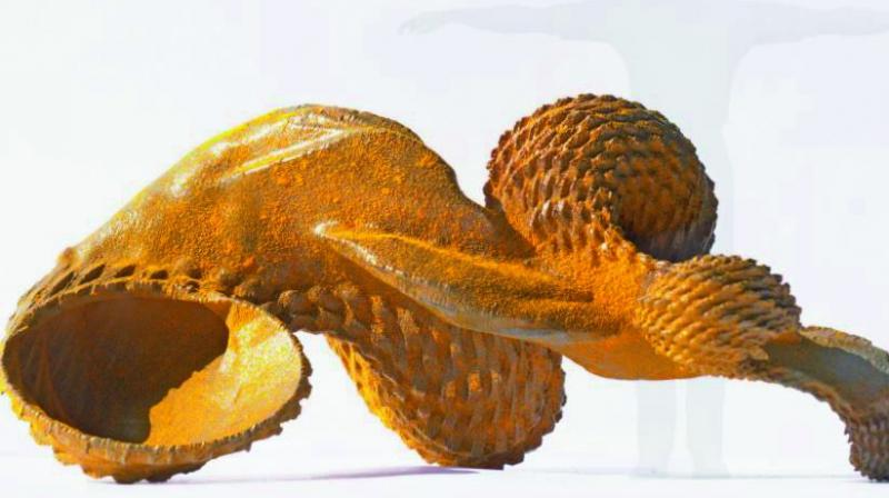 Nimbus — the selected sculpture to be showcased at the 23rd Sculpture by the Sea, Sydney, Australia