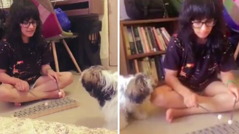 Screengrabs from the video Jasleen Royal posted on Twitter.