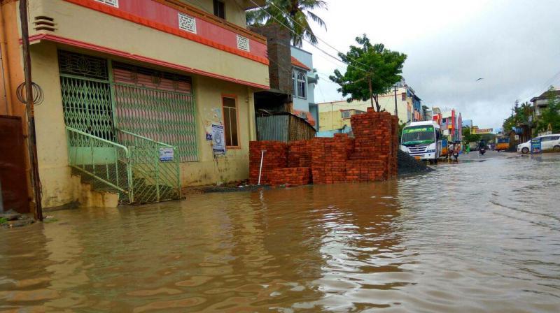 Rainwater locked near old bus stand at Sirkazhi. (Photo: DC)