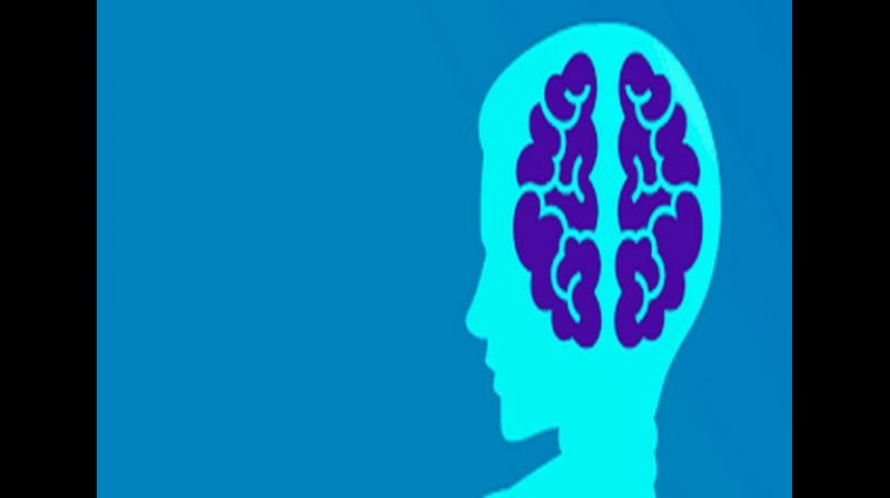 The research has identified a specific critical process within the brain that is clearly affected when inflammation is present. (Photo: ANI)