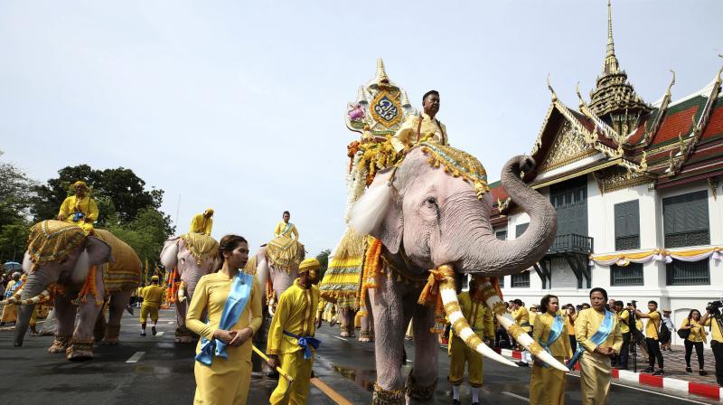 Ten elephants from Ayutthaya camp march in procession near the Grand Palace to celebrate Thai King Maha Vajiralongkorn's coronation, in Bangkok. (Photo: AP)