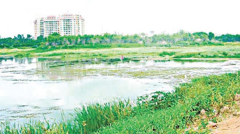 Early panchayat records show that Yelachenahalli Lake is spread over 6 acres and 32 guntas. But activists said that previous surveys deliberately skipped encroachments