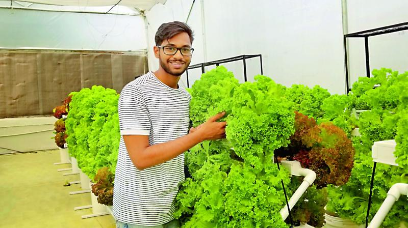 Vihari Kanukollu with fresh produce at UrbanKisaan's laboratory.