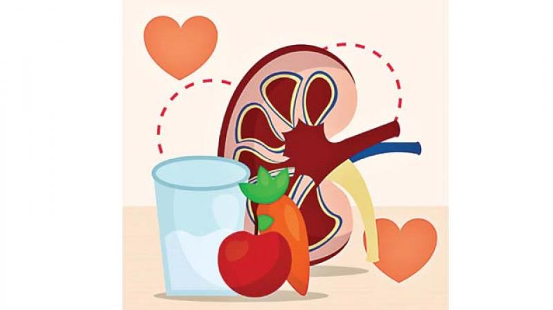 5 tips on how to keep you kidneys healthy