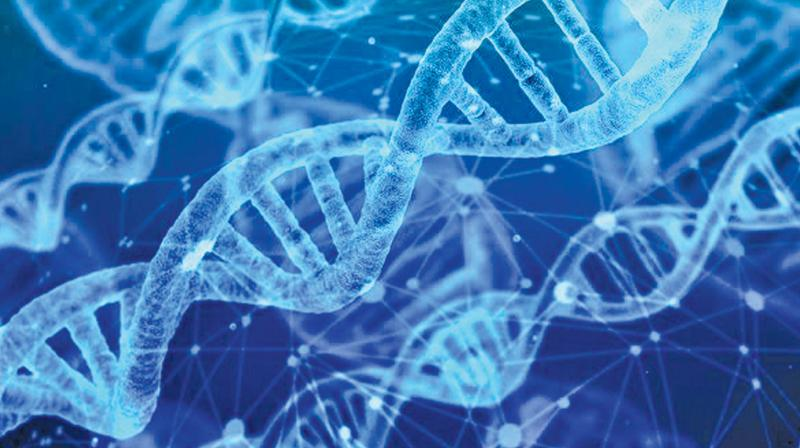 DNA technology of late has become more sensitive, turning it into a double-edged sword as it can now detect and analyse DNA from samples comprising only 16 cells.