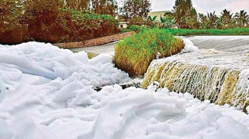 On Monday, the Bengaluru Development Authority (BDA), which is the custodian of the water body, said that deweeding has begun at the lake.