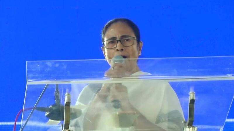 TMC is organising the rally to gather support for a pan-India, strong and united, anti-BJP front. (Photo: ANI | File)