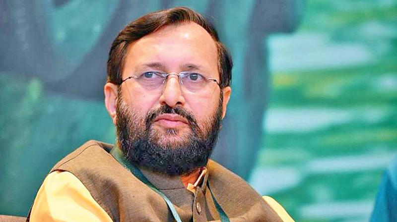 Gandhi was responsible for taking Indian politics to a an resourcnew low, Javadekar said. (Photo: File)
