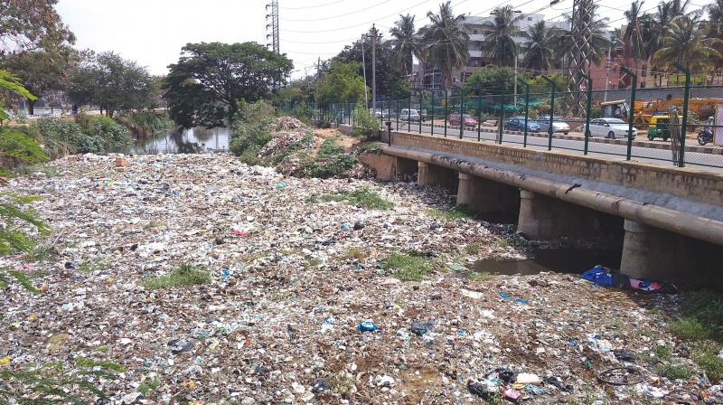 A storm water drain near Agara Lake that is choked with plastic waste (Image: DC)
