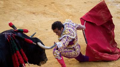 Spaniards celebrate ancient sport of bullfighting. (Photo: AFP)