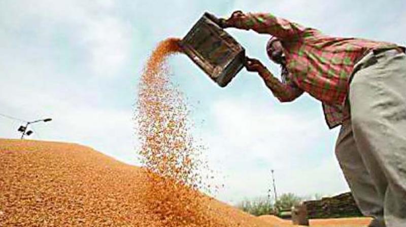 Foodgrains will get cheaper under GST.