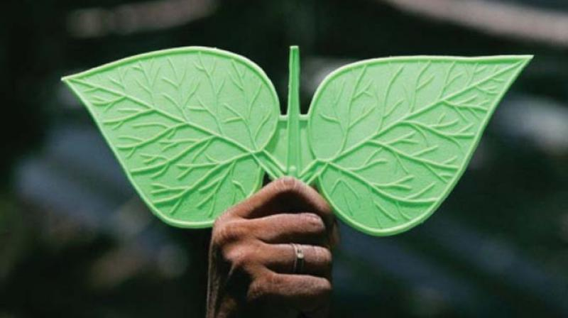 This is the second time in the history of AIADMK that the 'Two Leaves' symbol is being frozen.