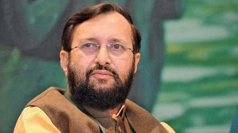 Intervening in the row over the remarks, Javadekar said there are no plans for a national seminar to prove Darwin wrong. (Photo: File)