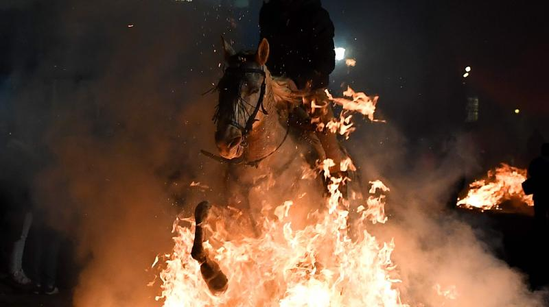 "The traditional religious festival ""Luminarias"" is celebrated in honour of Saint Anthony, patron saint of animals. (Photo: AFP)"