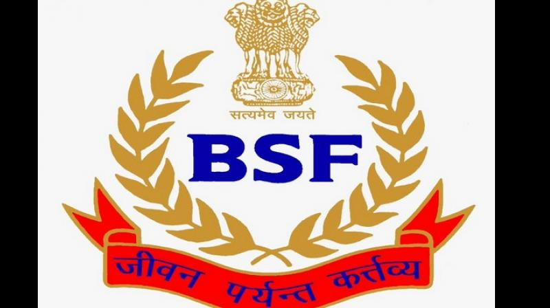 BSF orders Court of Inquiry against for standard operating procedure violation. (Photo: File)