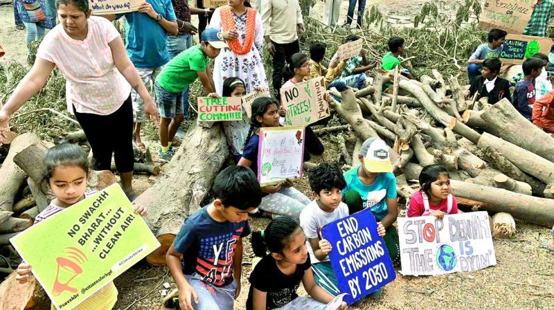 The sight of the axed trees spread along the road was what instigated the outrage, which eventually took the form of a full-fledged protest