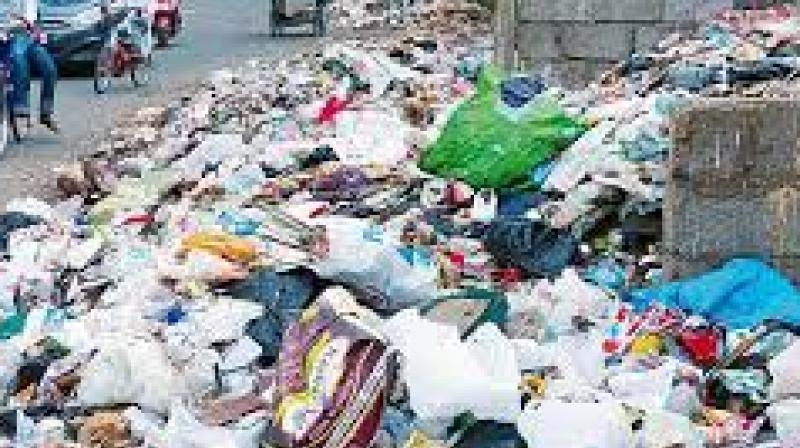 """The only solution is setting up of a Waste Management Board comprising  honest officials to deal with the city's garbage,"""" he said."""