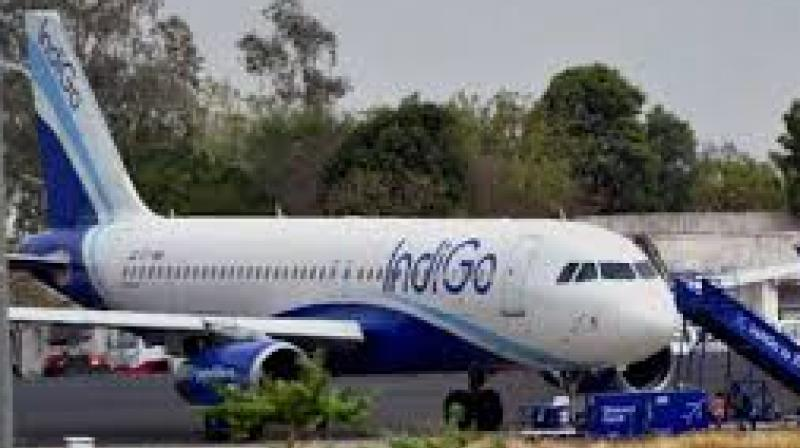 Indigo said that it offered $300 as per international conventions to the complainant, which Mr Mohammed did not accept.