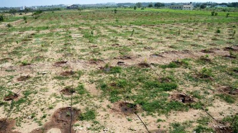 Soil contamination a new problem in visakhapatnam for Soil contamination