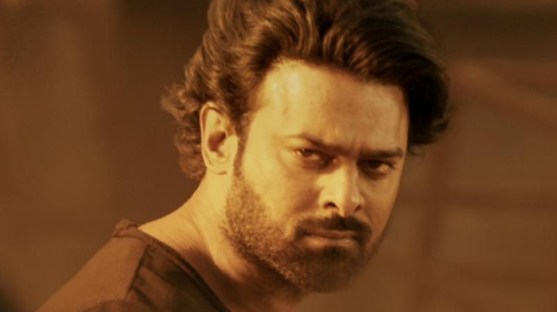 Prabhas' fan climbs to the top of cell phone tower just to meet him; details inside