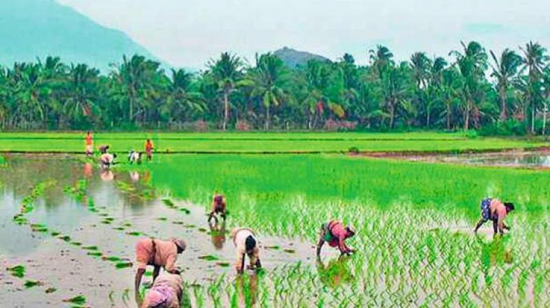 Karshika Karma Sena spreads across Kerala