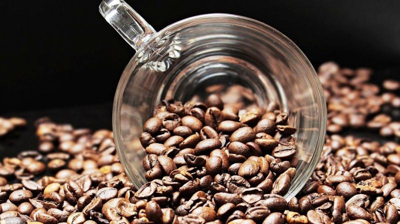 The muddy smell in Araku Coffee has been reported several times by the Indian Coffee Trade Association upon inspection of its cup quality. (Photo: Representational/Pixabay)
