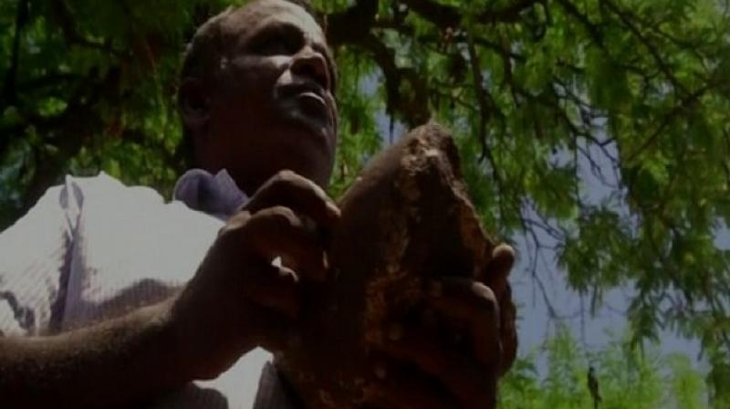 Since the day Lakshmi Narayan found this stone in his farmhouse, he has been approaching various mine department authorities to hand it over to them, and finally, he visited the district collectorate office on Monday to give it to them. (Photo: ANI)