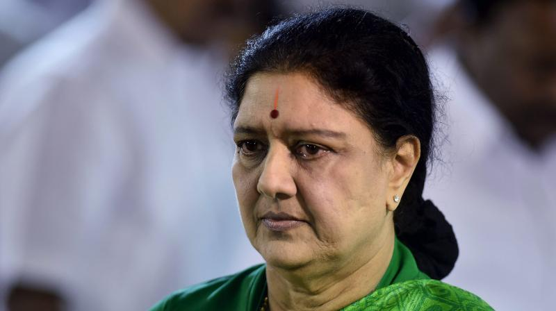 AIADMK General Secretary VK Sasikala (Photo: PTI)