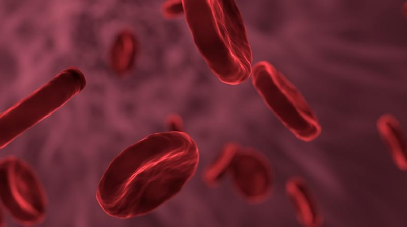 Genetic mutations could impact cancer treatment. (Photo: Pixabay)