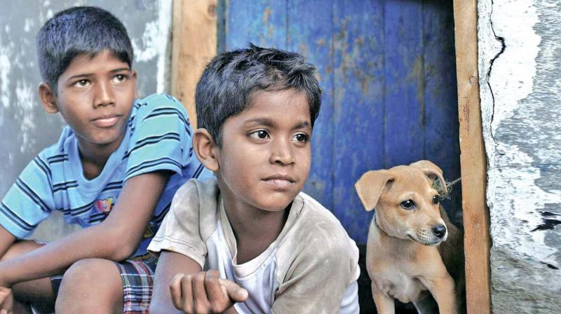Kaaka Muttai Tamil Movie Downloaddcinst