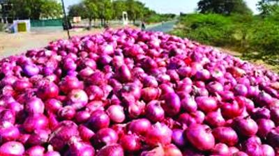 The buffer onion is also being supplied to other states as well.