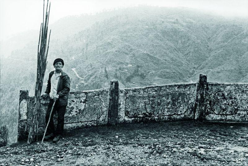 A view of Darjeeling
