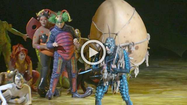 Cirque Du Soleil's 'Ovo' in London