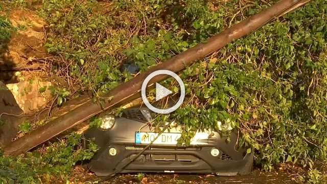 Germany cleans up after storm
