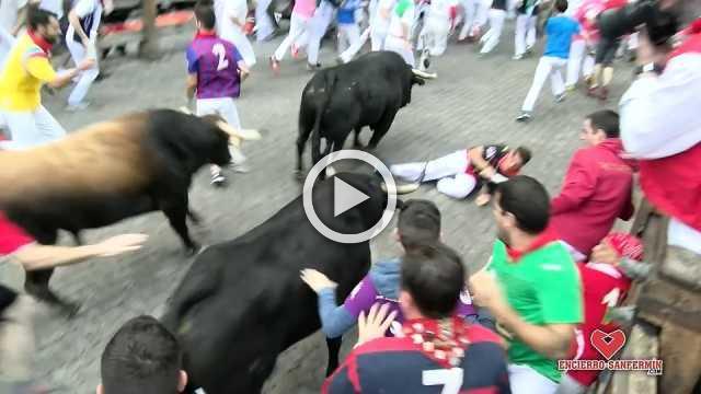 No gorings at 6th Pamplona bull run