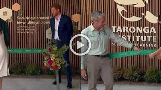 Prince Harry and pregnant wife Meghan meet a koala at Australian zoo