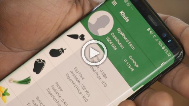 From crops to shops: the SA app boosting small-scale farmers