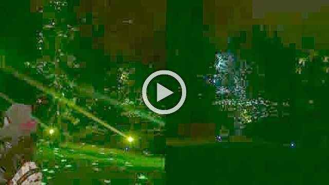 Botanical Garden lights up Christmas vibes in Berlin