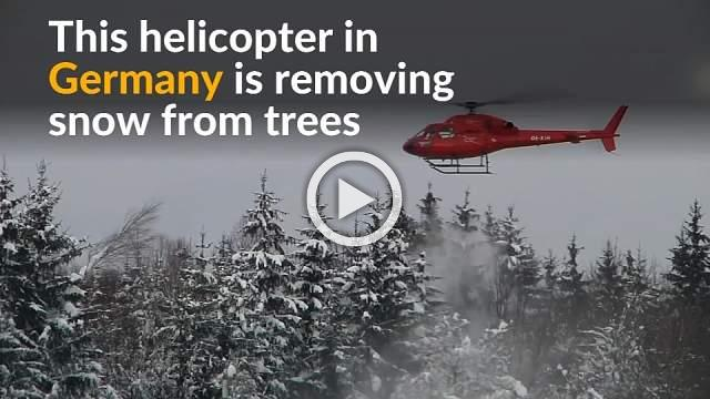 Helicopter propellers help remove snow on trees in Germany