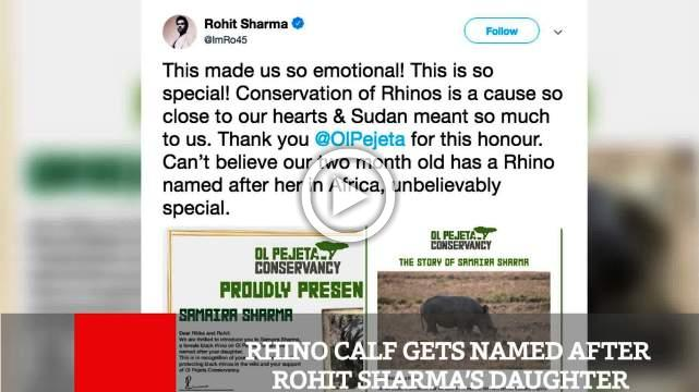 Rhino Calf Gets Named After Rohit Sharma's Daughter
