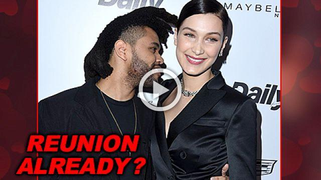 The Weeknd Trying To Woo Bella Hadid Back With Gifts and Flowers Before Victorias Secret Fashion Show