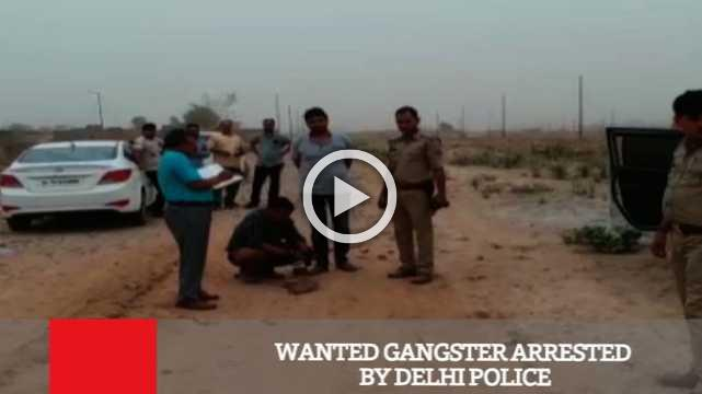 Wanted Gangster Arrested By Delhi Police