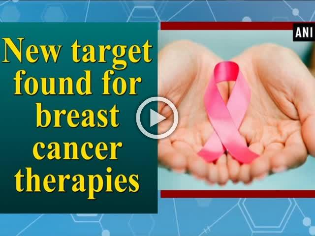 New target found for breast cancer therapies