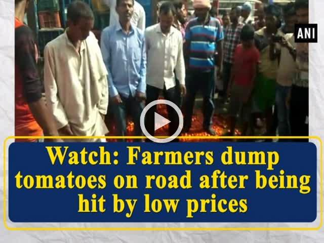 Watch: Farmers dump tomatoes on road after being hit by low prices