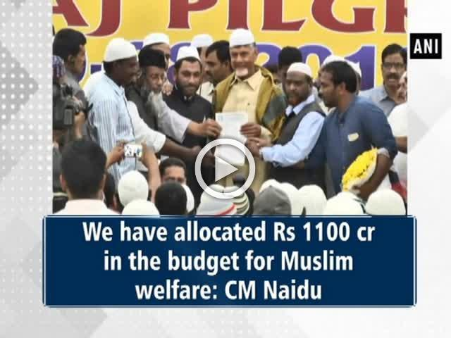 We have allocated Rs 1100 cr in the budget for Muslim welfare: CM Naidu
