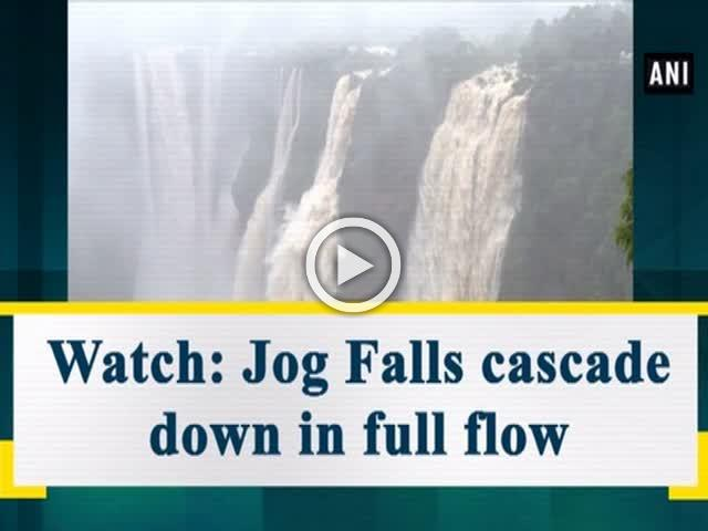 Watch: Jog Falls cascade down in full flow