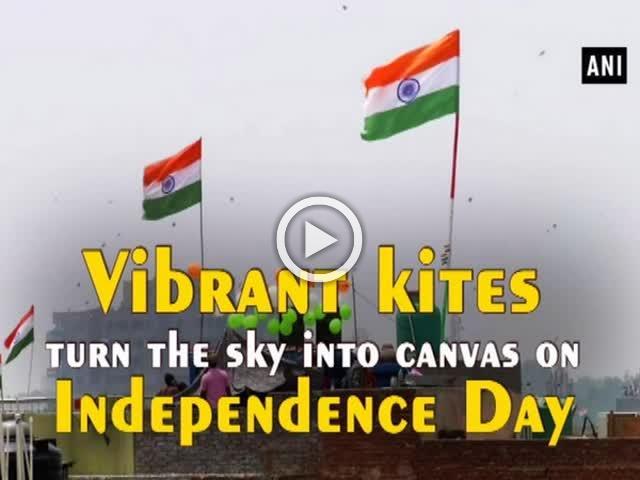 Vibrant kites turn the sky into canvas on I-Day