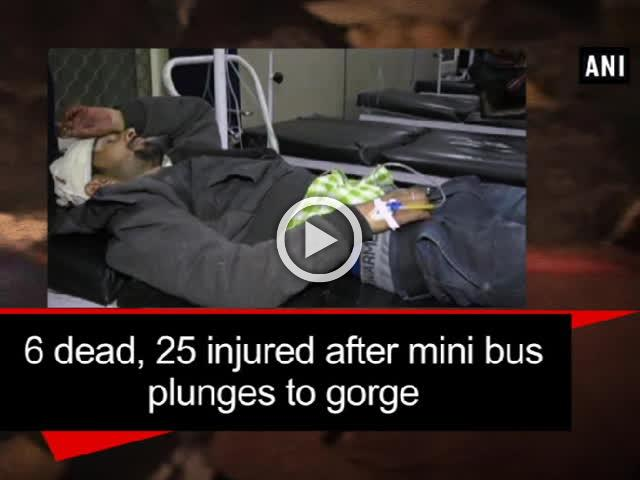6 dead, 25 injured after mini bus plunges to gorge