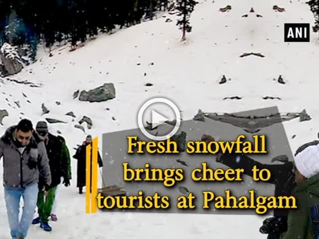 Fresh snowfall brings cheer to tourists at Pahalgam